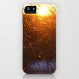 True Colors iPhone Case
