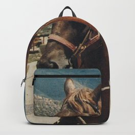 Townes Backpack