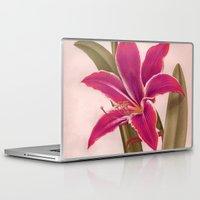vintage floral Laptop & iPad Skins featuring Vintage Floral by 83 Oranges™