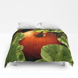 Waiting For Halloween Comforters