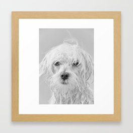 I had a bad day Framed Art Print