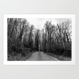 Black and white path in the forest Art Print