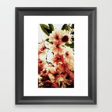 Blossoming Pink Framed Art Print