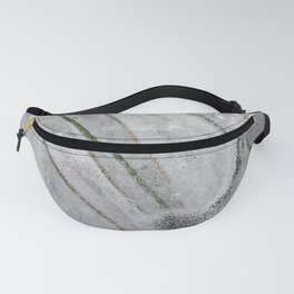 Straws and twig encased under ice. Fanny Pack