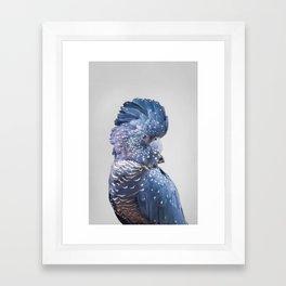 Black Cockatoo Framed Art Print