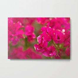 Dreamy Pink Metal Print