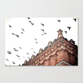 Citys Bird Sanctuary Canvas Print
