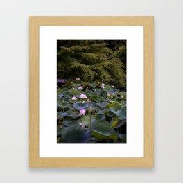 Kyoto Lily Pads Framed Art Print