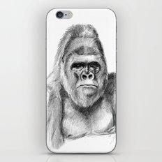 Gorilla male sketch SK020 iPhone & iPod Skin