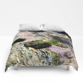 Rock Pool Comforters