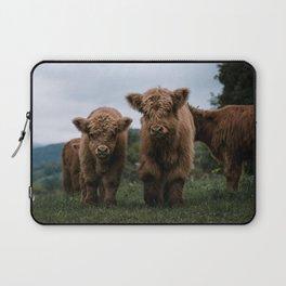 Scottish Highland Cattle Calves - Babies playing II Laptop Sleeve