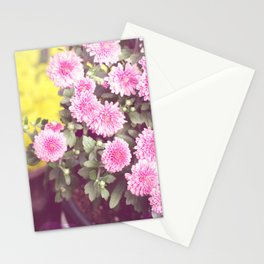 Vintage - Flower Pots Stationery Cards