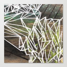Geometric Lines on Wood Canvas Print