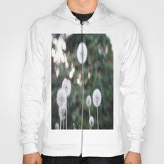 Dandelions Hoody