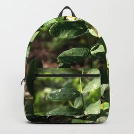 Dewdrops on Leaves Backpack