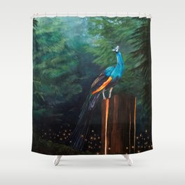 Light Catcher Shower Curtain