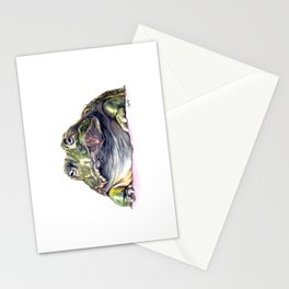 Bullfrog Snacking Stationery Cards