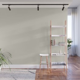 Off White - Navajo - Cream Solid Color Parable to September Fog 6003-1A by Valspar Wall Mural