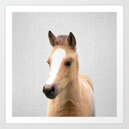 Baby Horse - Colorful Art Print