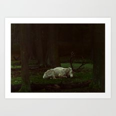 white deer Art Print