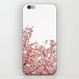 Cherry Blossoms (Color) iPhone Skin
