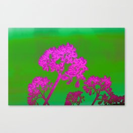 Funky Floral - JUSTART © Canvas Print