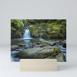 Sweet Creek Falls Mini Art Print