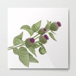 Flowers in the wild Metal Print