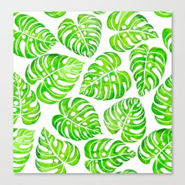 Monstera leaves watercolor Canvas Print