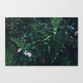 Fleurs Vertes Canvas Print