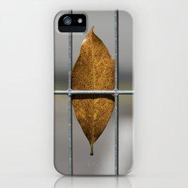 autumn leaf on gate background iPhone Case