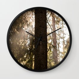Sunshine in the forest Wall Clock