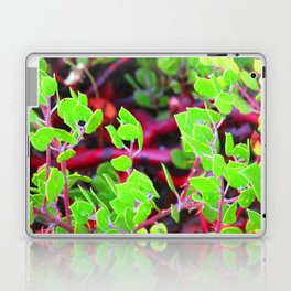 Manzanita II Laptop & iPad Skin