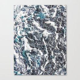 Inverted Bark Canvas Print