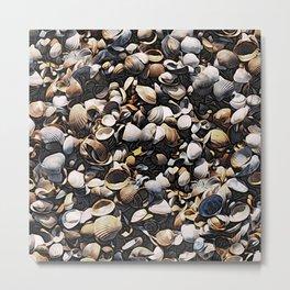 Mussels and Seashells Pattern Metal Print