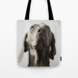 Portrait of Dave (4) Tote Bag