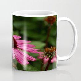 Echinacea Blossom Coffee Mug