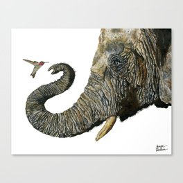 Elephant Cyril And Hummingbird Ayre 2 Canvas Print