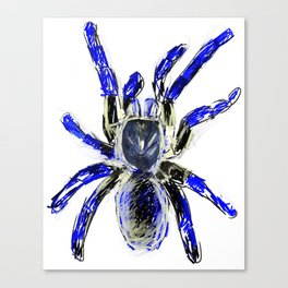 Tarantula Blue Canvas Print
