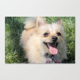 Excited Canvas Print