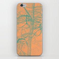 1657 iPhone & iPod Skin