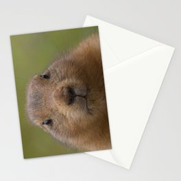 I'm cute Stationery Cards