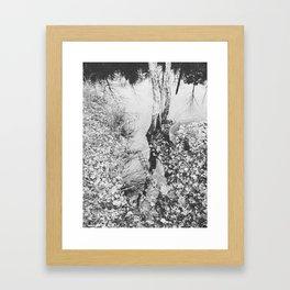 Autumn 12 Framed Art Print