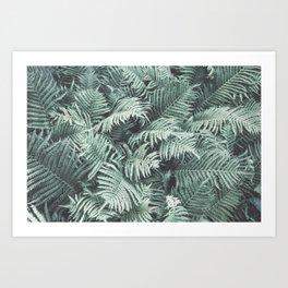 Fern Patten Turquoise Texture Art Print