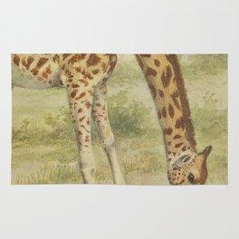 Vintage Giraffe Illustration (1903) Rug
