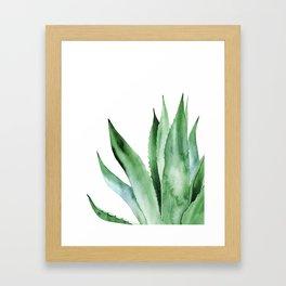 Agave Plant. Gerahmter Kunstdruck