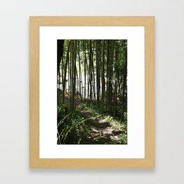 Riverside Bamboo Path in The Kiso Mountains Framed Art Print