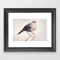Little Capitola Bird Framed Art Print