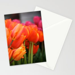 Cheery Tulips Stationery Cards