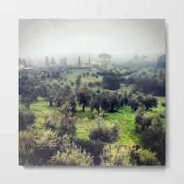 Boboli Gardens Metal Print